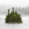 dragonhand: (mist lake)