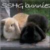 tales0f: (Bunnies SS/HG)