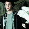 dickandharry: (Hedwig)