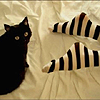 emjaynz: a black cat sits beside human feet that are wearing stripey socks (stripey socks)