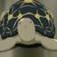 ereshkigali: screencap of a turtle from School Rumble season 2 (Default)
