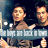shopfront: Source: Dark Angel. Alec and Logan, playing pool, back to side. Text: the boys are back in town. (DA - and the boys from the bush)