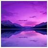beautifulsheen: purple misted mountains at dusk (Purple Mountains)