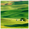 beautifulsheen: green rolling hills that remind me of Ireland (hills)