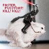 wickedblonde: (Faster Pussycat Kill Kill)