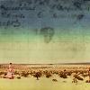 quinara: Tara walking in the Slayer's desert. (Restless desert)