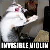 sam_bluesky: A cat playing an invisible violin (cat - invisible violin)