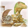 melannen: a sarian dinosaur looking over a worktable with seashells and timekeeprs (earth science)