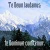 mathsnerd: ((strength) te Deum laudaumus)