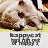 dark_litany: (Cat Run Out of Happy :()