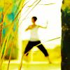 aris_tgd: Deu from Raging Phoenix, training (Deu practicing)
