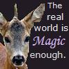 "capriuni: photo of a roe deer yearling, with text: ""The real world is magic enough"" (unicorn-real)"
