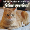 "helens78: Picture of an orange tabby with text: ""I for one welcome our new feline overlord"" (me: olaf)"
