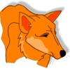 furtech: (dingo!)