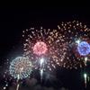 furtech: (Fireworks)