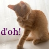 neqs: A picture of a kitten with a paw to its face, with the text 'D'oh!' (d'oh-kitty)