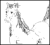vseokey777: (конь)