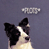 autymn: a border collie face tilted up toward us with a thoughtful look on his face. The word plots is in *s above him. (Border Collie Plots)