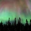 shadowchaser: (Green-Pink Aurora)