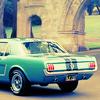 alwaysenduphere: (Mustang Ellie)