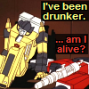 dragondancer5150: (Transformers - Sunny & Sides drunk)