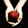 twilight: twilight book icon (Default)