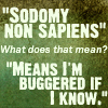 highlyeccentric: Sodomy Non Sapiens - what does that mean? - means I'm BUGGERED IF I KNOW (sodomy non sapiens)
