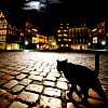 zanzando: (Cats in the Night)