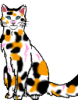 ayngelcat: (torty cat)