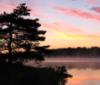 kate_sherwood: Sunrise Tree (Peaceful)
