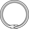 songsofemelnuvi: The Ouroboros, a snake eating its tail (life's mysteries)