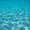 seashimmer: (underwater)