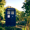 sapote: The TARDIS sits near a tree in sunlight (pic#453445)
