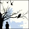 thirdbird: (skybirds)