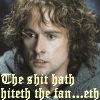 katta: Pippin from Lord of the Rings with the caption: The shit hath hiteth the fan...eth. (feelings - shit hath, LOTR pippin)