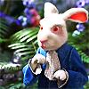 mathsnerd: ((alice in wonderland) white rabbit)