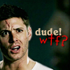 "torra: Dean from SPN makeing a WTF face with text (SPN: ""Dude WTF?"")"