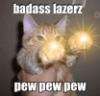 inverarity: (lasercat)