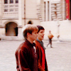 dubious: Bromance in every way. (Arthur and Merlin [Merlin])