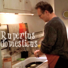 "kivrin: Giles labeled ""rupertus domesticus"" (domestic!giles (cheesygirl))"