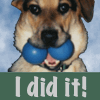 "jesse_the_k: ACD Lucy holds two blue racketballs in her mouth, side by side; captioned ""I did it!"" (LUCY absurd success surprise)"
