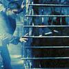 lavinia: Supernatural screenshot of Sam and Dean (SPN - Sam in a cage!)