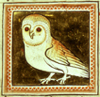 ossamenta: Picture of an owl from a Medieval manuscript (Medieval owl)