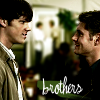 blue_icy_rose: (Sam & Dean - brothers)