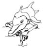 dolphins_log: (Contemplation)