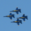 dolphins_log: (Blue Angels)