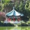 dolphins_log: (Pagoda)
