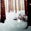 soulswallo: (Stock-Winter-Snowy woods)