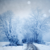 soulswallo: (Stock-Winter-Blue and beautiful)