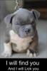 slaymesoftly: (puppy lick)